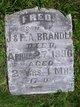 """Profile photo:  Frederick Elias """"Fred"""" Brandli"""