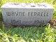 Wayne Ferrell