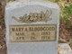 "Mary Ann ""Pollie"" <I>Chesser</I> Bloodgood"