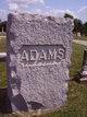 Profile photo: Dr David B Adams