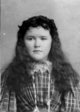 Nellie N. <I>Hickman</I> McKeever