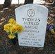 Profile photo:  Thomas Alfred Abegg