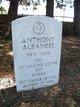 Profile photo:  Anthony Albanese