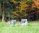 Milk Family Cemetery