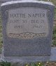 Hattie Lee <I>Runion</I> Napier