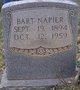 Bart Napier