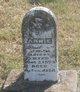 Profile photo:  Annie Alberty