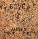Profile photo:  Agnes Bove