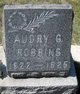 Profile photo:  Audry G Robbins