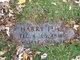 Harry Flak