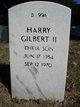 Profile photo:  Harry Gilbert Bandemer, II