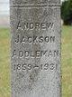 Profile photo:  Andrew Jackson Addleman, II