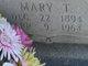 Mary <I>Tweed</I> Palmer