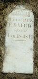 Infant Daughter Baird