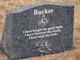 Rev Robert Walker Rucker