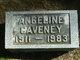 Profile photo:  Angeline <I>Kleineider</I> Caveney