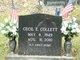 Cecil Elvis Collett