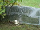 Maj Walter Carl Hoadley