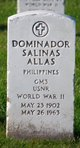 Profile photo:  Dominador Salinas Allas
