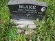 Roy Patrick Blake