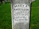 Profile photo:  Mary A Anderson