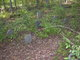 Beavers Family Cemetery