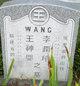 Profile photo:  Wang