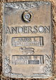 Argus L. Anderson