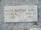 Profile photo:  Alvin Burton Burel