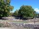 Pacheco Cemetery