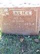 Profile photo:  Alice All