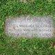 Irene E. <I>Wallace</I> Goodman