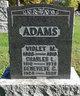 Profile photo:  Violet M Adams