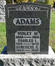 Profile photo:  Genevieve C Adams