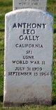 Profile photo:  Anthony Leo Gally