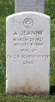 Profile photo:  A Jeanne Schoonover