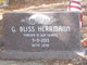 George Bliss Herrmann