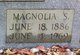 Magnolia <I>Stonecypher</I> Bennett
