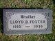 Lloyd David Foster