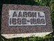 Aaron L. Arnold