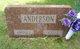 Profile photo:  Agnes <I>Larson</I> Anderson