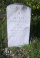 Profile photo:  Albert Jackson, Sr