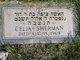Profile photo:  Celia Sherman