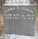 Profile photo:  Dorr D Horn