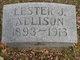 Lester J Allison