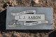 L. J. Aaron