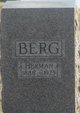 Axel Herman Berg