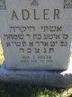 Profile photo:  Ida T. <I>Traister</I> Adler
