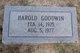 Harold William Goodwin