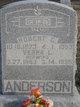 Robert G Anderson